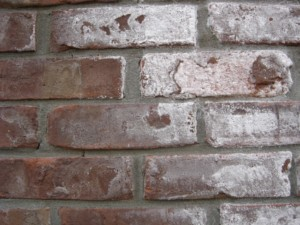 example of efflorescence